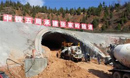 耿力混凝土湿喷台车承建张家岭隧道